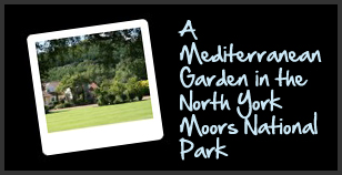A Mediterranean garden in the North York Moors National Park