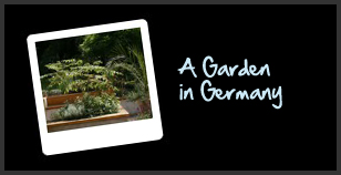 A garden in Germany